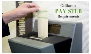 Pay Stub